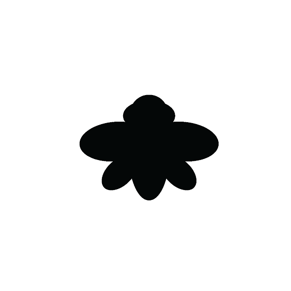 Τζιτζίκια